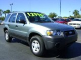 2006 Titanium Green Metallic Ford Escape XLS #429826