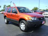 2006 Blazing Copper Metallic Ford Escape XLS #429836