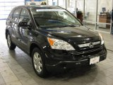 2009 Royal Blue Pearl Honda CR-V EX-L 4WD #43339550