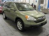 2008 Green Tea Metallic Honda CR-V EX-L 4WD #43339551