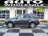 2009 Black Pearl Slate Metallic Ford Escape Limited V6 4WD #43339295