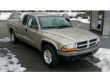 2004 Light Almond Pearl Metallic Dodge Dakota SXT Club Cab #43338588