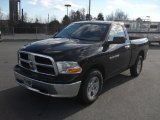 2011 Dodge Ram 1500 Brilliant Black Crystal Pearl