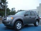 2011 Sterling Grey Metallic Ford Escape XLT #43338828
