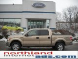 2011 Pale Adobe Metallic Ford F150 XLT SuperCrew 4x4 #43440014