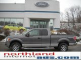 2011 Sterling Grey Metallic Ford F150 XLT SuperCab 4x4 #43440015