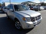 2009 Brilliant Silver Metallic Ford Escape Limited V6 #43556350