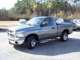 2005 Mineral Gray Metallic Dodge Ram 1500 ST Regular Cab #43556662