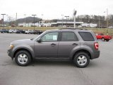 2011 Sterling Grey Metallic Ford Escape XLT #43723777