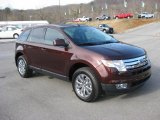 Ford Edge 2009 Data, Info and Specs