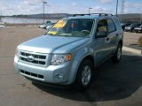 2009 Light Ice Blue Metallic Ford Escape Hybrid 4WD #4364741