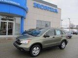2008 Green Tea Metallic Honda CR-V LX 4WD #43879895