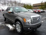 2011 Sterling Grey Metallic Ford F150 Platinum SuperCrew 4x4 #43880348