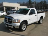 2006 Bright White Dodge Ram 1500 ST Regular Cab 4x4 #43880806