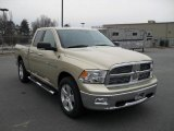 2011 Dodge Ram 1500 White Gold