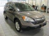 2009 Urban Titanium Metallic Honda CR-V EX 4WD #43991636