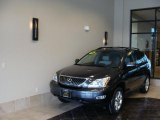 2009 Smokey Granite Lexus RX 350 AWD #43991599