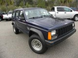 Jeep Cherokee 1995 Data, Info and Specs