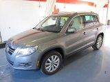 2011 Alpine Gray Metallic Volkswagen Tiguan SE #44203075