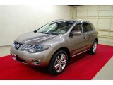 2010 Nissan Murano LE Data, Info and Specs