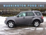 2011 Sterling Grey Metallic Ford Escape XLT V6 4WD #44204090