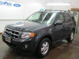 2009 Black Pearl Slate Metallic Ford Escape XLT #44204800
