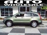 2008 Green Tea Metallic Honda CR-V EX-L 4WD #44204150