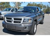 2010 Mineral Gray Metallic Dodge Dakota Big Horn Crew Cab 4x4 #44316659