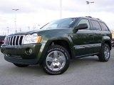 2006 Jeep Green Metallic Jeep Grand Cherokee Limited 4x4 #4423782