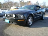2006 Black Ford Mustang GT Premium Convertible #44510551