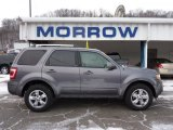 2011 Sterling Grey Metallic Ford Escape Limited V6 4WD #44508951