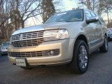 2007 Light French Silk Metallic Lincoln Navigator Luxury #44510617