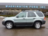 2006 Titanium Green Metallic Ford Escape XLT V6 4WD #44511451