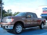 2011 Golden Bronze Metallic Ford F150 XLT SuperCab #44511021