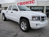 2010 Stone White Dodge Dakota Big Horn Crew Cab #44653331