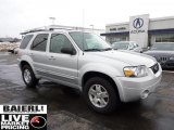 2006 Silver Metallic Ford Escape Limited 4WD #44652019