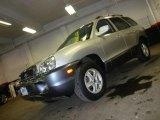 2004 Pewter Hyundai Santa Fe GLS 4WD #44653341