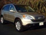 2007 Borrego Beige Metallic Honda CR-V EX-L 4WD #44653620