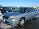 2007 Golden Pewter Metallic Chevrolet Malibu LS Sedan #44736380