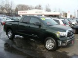 2010 Spruce Green Mica Toyota Tundra TRD Double Cab 4x4 #44901149