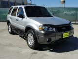 2006 Silver Metallic Ford Escape XLT V6 #44901223
