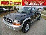 2004 Graphite Metallic Dodge Dakota SLT Quad Cab 4x4 #44957699