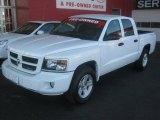 2010 Stone White Dodge Dakota Big Horn Crew Cab #44956528