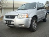 2004 Ford Escape Satin Silver Metallic