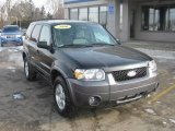 2006 Black Ford Escape XLT V6 4WD #45168404