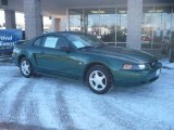 2003 Tropic Green Metallic Ford Mustang V6 Coupe #45168186