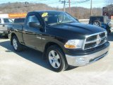 2010 Dodge Ram 1500 SLT Regular Cab 4x4 Data, Info and Specs
