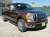 2011 Golden Bronze Metallic Ford F150 XLT SuperCrew 4x4 #45230066
