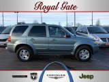 2006 Titanium Green Metallic Ford Escape Limited 4WD #45229523