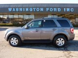 2011 Sterling Grey Metallic Ford Escape Limited V6 4WD #45230132